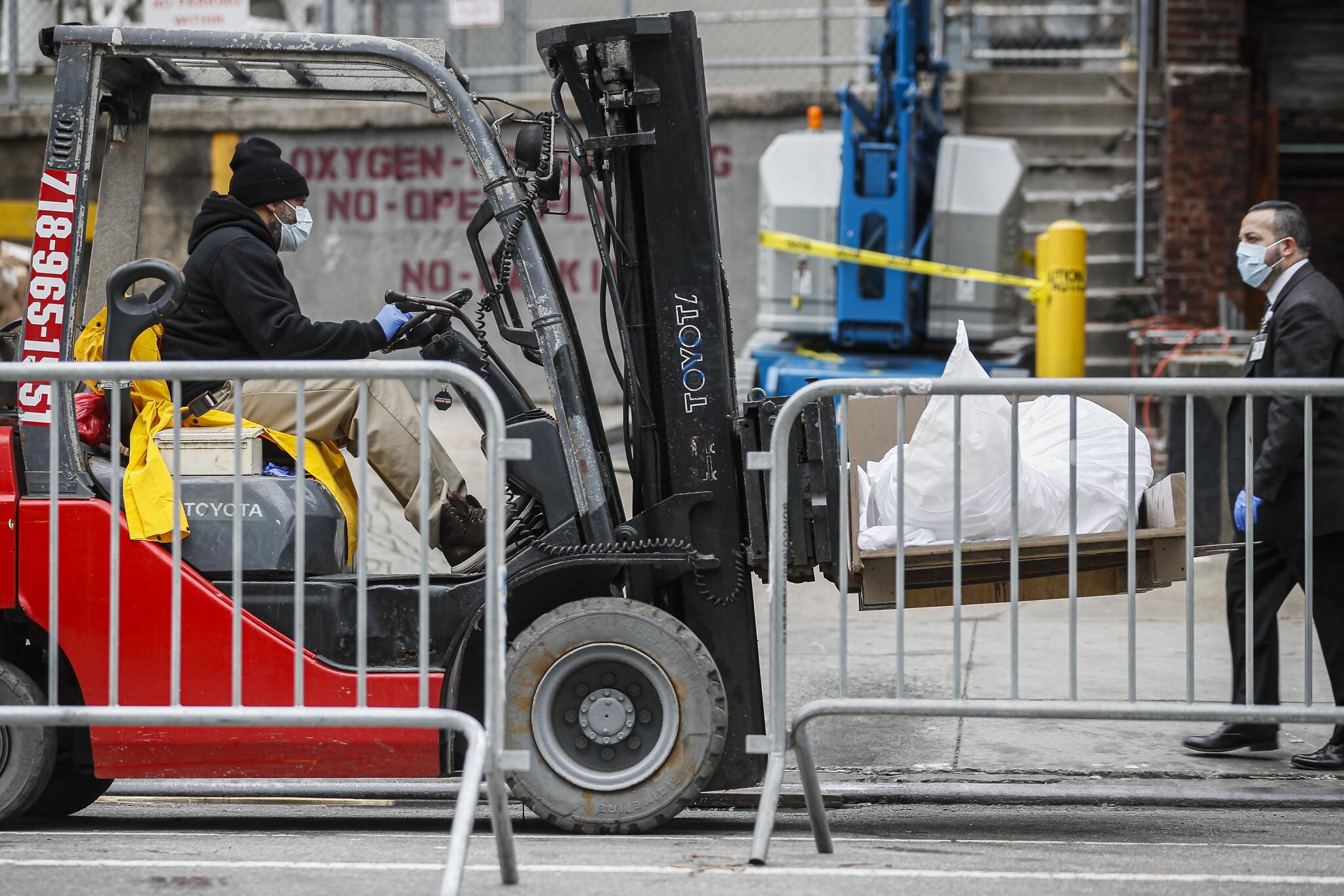 Radnik na viljuškaru utovara zamotana tela preminulih od virusa COVID-19 u kamione-hladnjače u Bruklinu, Njujork, 31. mart 2020. (Foto: AP Photo/John Minchillo)