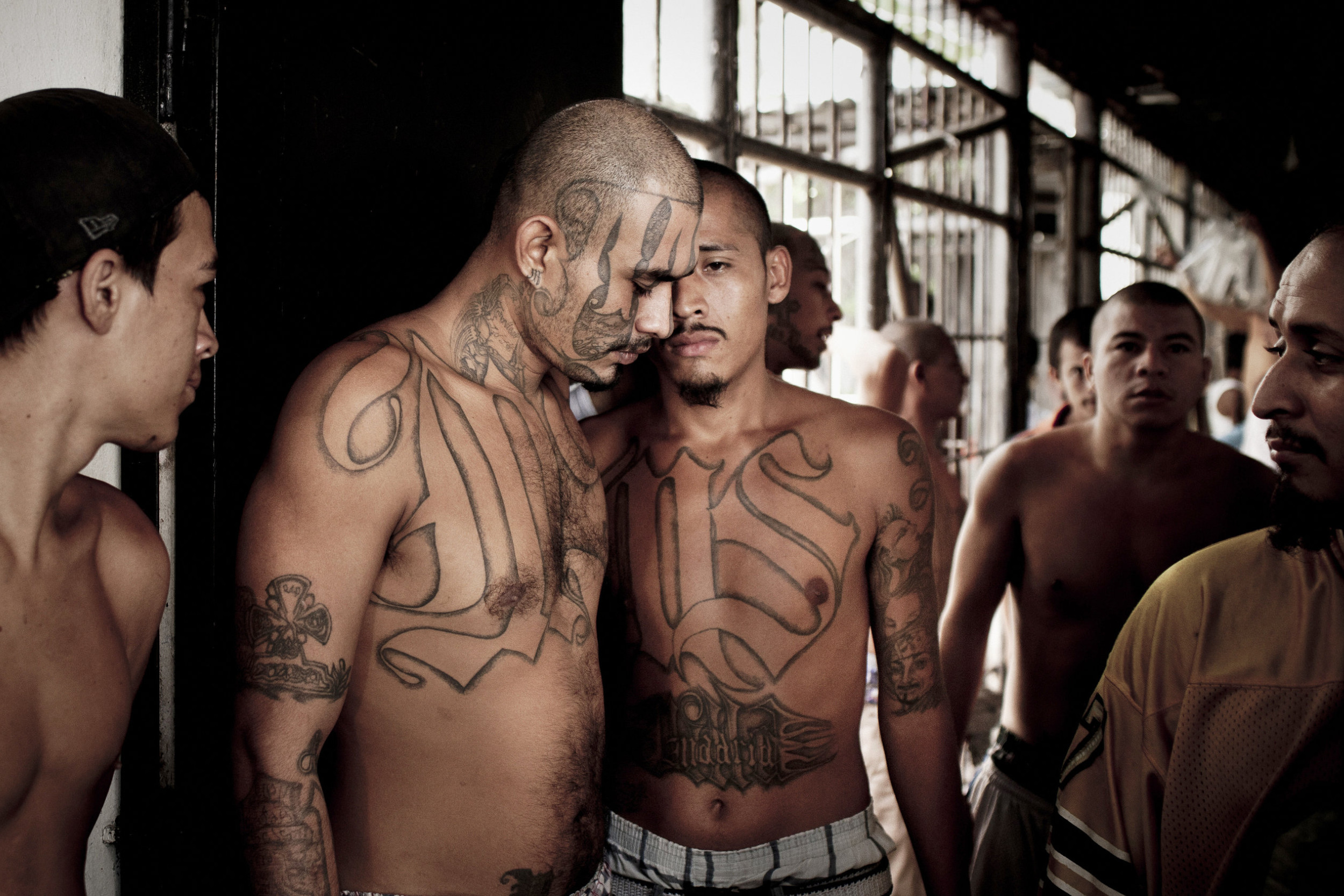 Pripadnici kriminalne bande MS-13 (Foto: Tomas Munita/The New York Times)