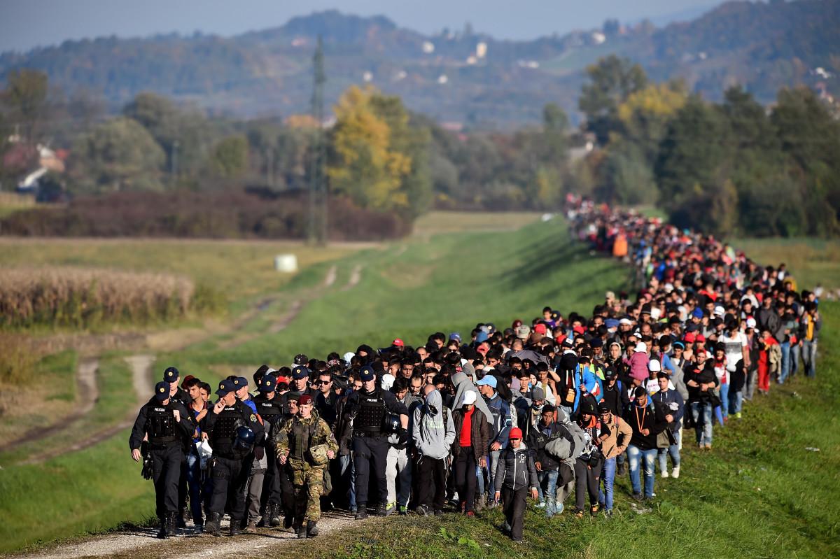 Полиција спроводи колону миграната кроз поља до прихватног центра у Брежицама у Словенији, 24. октобар 2015. (Фото: Jeff J. Mitchell/Getty Images)