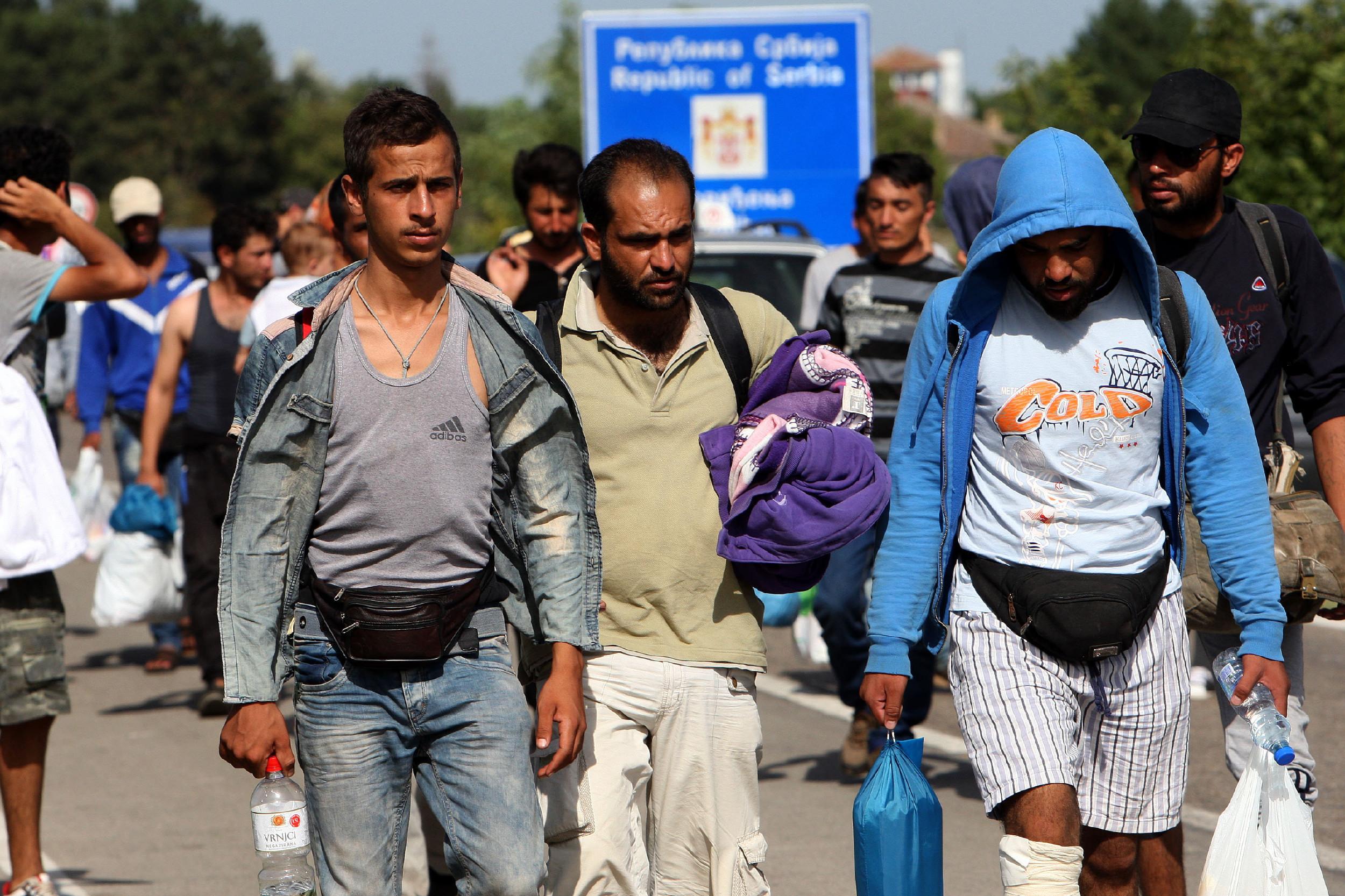 Мигранти на српско-мађарској граници (Фото: Танјуг/Сава Радовановић)