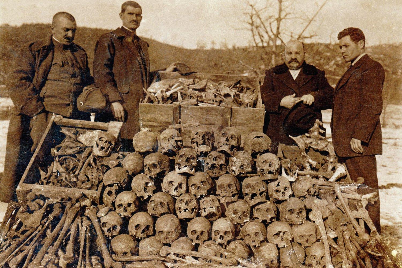 Kosti i lobanje ubijenih Srba u Surdulici, decembar 1915. (Foto: Dejan Antić/Novi Standard)