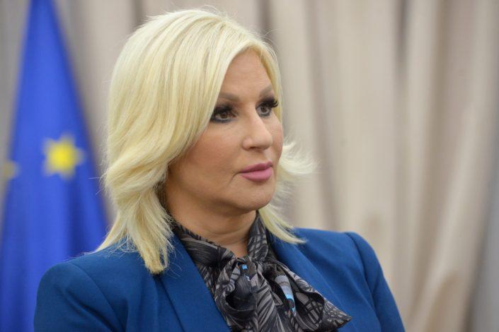 Vlada povukla predlog zakona o garancijama za Turski tok, oglasila se Z. Mihajlović