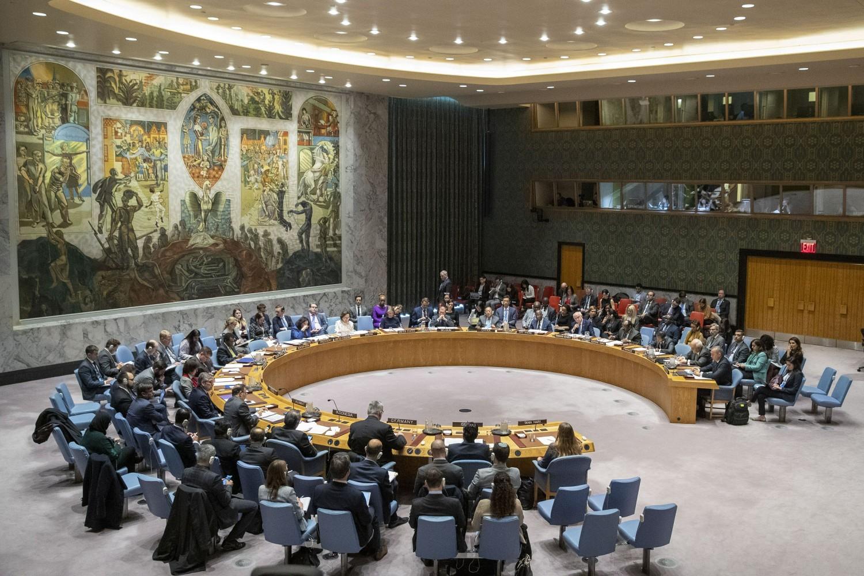 Sednica Saveta bezbednosti Ujedinjenih nacija (Foto: AP Photo/Mary Altaffer)