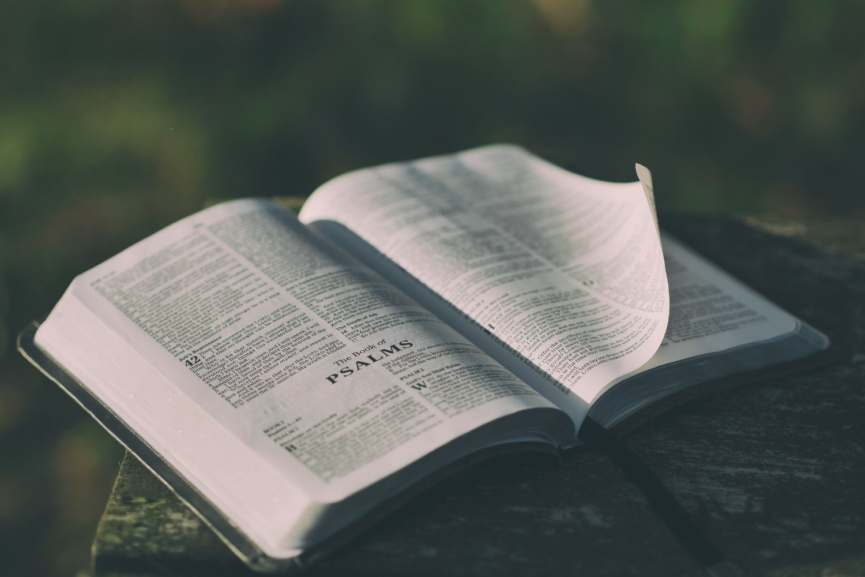Biblija (ilustracija) (Foto: